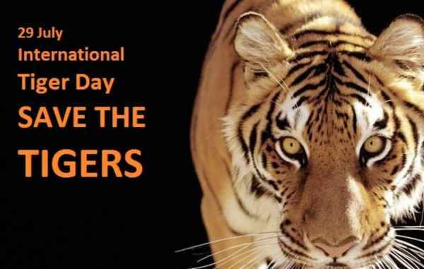Short Speech on International Tiger Day