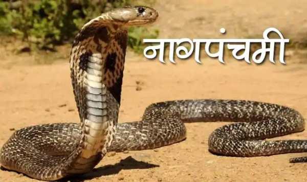 Essay on Nag Panchami in Hindi