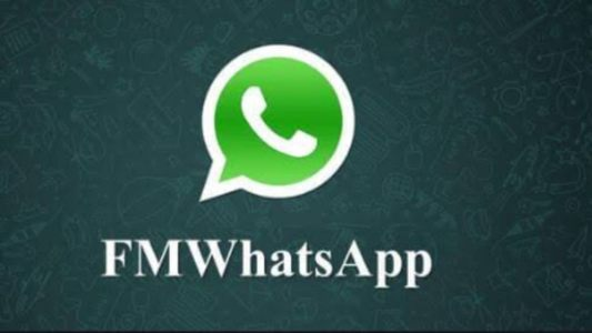 FmWhatsApp APK Latest Version